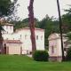 pontificia-academia-de-las-ciencias.png